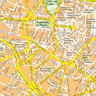 Montpellier vector map