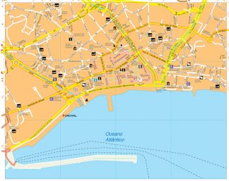 Funchal vector map