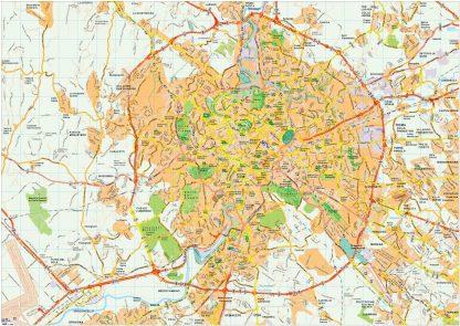 Roma map vector
