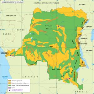 Congo Dem Rep vegetation map