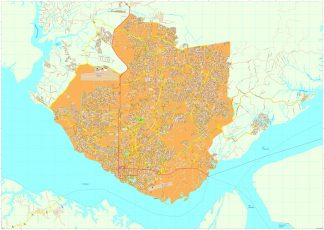 Manaus vector map
