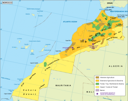 Morocco vegetation map