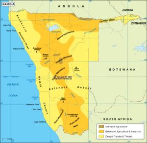 Naminia vegetation map