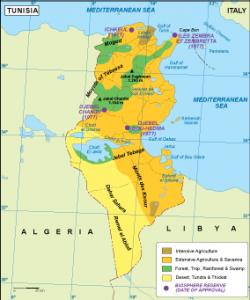 Tunisia vegetation map