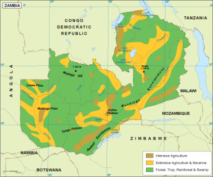 Zambia vegetation map