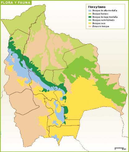 Bolivia mapa flora fauna